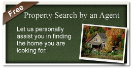 Property Search by an Agent