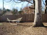 hammock-and-swing.jpg