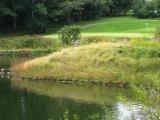pond-course.jpg